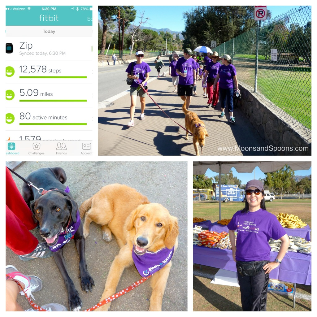 We had three cutie canines joining us for the walk. Moby and Rory are featured here. And here I am in front of the snack table (of course!) ready for the walk. ;)